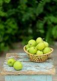 在一个篮子的自创土气绿色苹果在一把老凳子 免版税库存照片