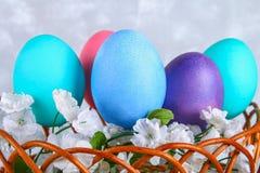 在一个篮子的色的复活节彩蛋在灰色具体背景 免版税库存照片