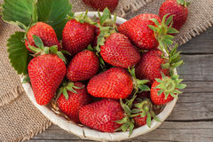 在一个篮子的草莓在庭院里 图库摄影