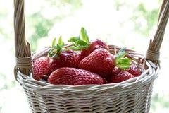 在一个篮子的草莓在杂色的背景 库存照片