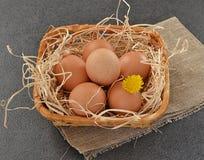 在一个篮子的鸡蛋在灰色背景 免版税库存照片