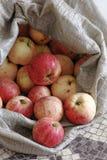 在一个粗砺的织品袋子的土气苹果 自然农村产品 没有杀虫剂和GMOs的生态果子 免版税库存图片