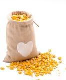 在一个粗麻布袋的黄色玉米五谷在白色 库存照片
