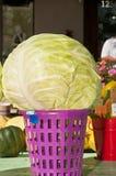 在一个紫色篮子的新近地被采摘的圆白菜头 图库摄影