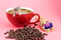 在一个红色咖啡杯的一个猫模型 图库摄影