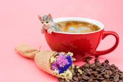 在一个红色咖啡杯的一个猫模型 库存图片