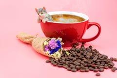 在一个红色咖啡杯的一个猫模型 库存照片