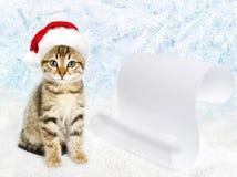 在一个红色圣诞老人` s帽子的小的小猫 库存图片