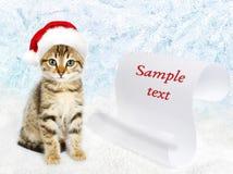 在一个红色圣诞老人` s帽子的小的小猫 免版税库存照片