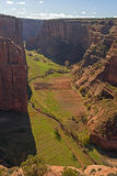 在一个红色岩石峡谷的早晨光 库存照片