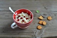 在一个红色碗的酸奶干酪 库存图片