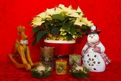 在一个红色篮子的一品红与蜡烛、雪人和驯鹿 免版税库存图片