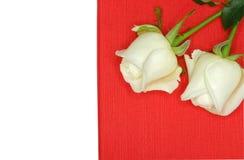 在一个红色纸箱的两朵白玫瑰 图库摄影