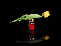 在一个红色玻璃烛台的灼烧的蜡烛 图库摄影