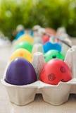 在一个纸盒的五颜六色的被绘的复活节彩蛋在绿色背景 免版税图库摄影