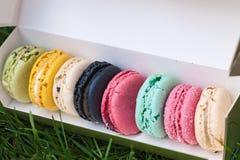 在一个纸箱的多彩多姿的蛋白杏仁饼干 库存照片