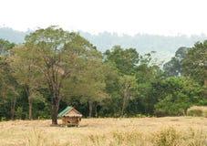 在一个结构树附近的一个小屋在山 免版税库存照片