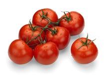 在一个绿色分行的红色蕃茄 库存照片