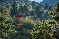 在一个绿色森林之间的美丽的寺庙 图库摄影
