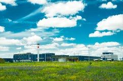 在一个绿色草甸中间的工厂 免版税库存照片