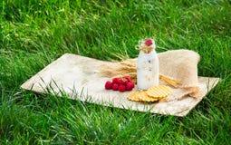 在一个绿色草甸的早餐 圆滑的人和自创奶蛋烘饼用莓 概念季节性分隔的白色 库存图片