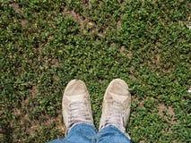 在一个绿色领域的一个人的两腿 库存图片