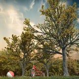 在一个绿色领域的红色三轮车 库存照片