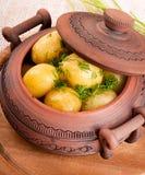 在一个罐的开胃土豆用茴香 库存图片