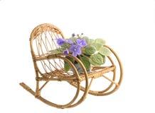 在一个罐的紫色紫罗兰色花在一把晃动的藤椅 库存照片