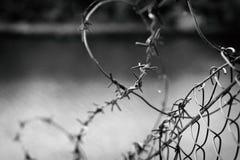 在一个网的铁丝网在河的背景,关闭上 库存照片