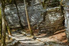 在一个美丽的峡谷的道路 免版税库存照片