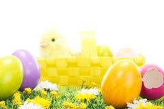 在一个美丽的开花的草甸的复活节彩蛋 免版税库存照片