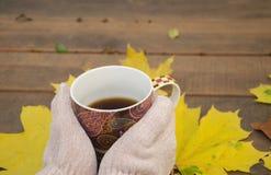 在一个美丽的杯子的热的饮料 免版税库存照片