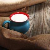 在一个美丽的杯子的牛奶 免版税库存图片