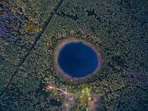 在一个美丽的森林湖的垂直的看法在森林里在秋天 库存图片