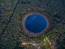 在一个美丽的森林湖的垂直的看法在森林里在秋天 图库摄影