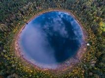 在一个美丽的森林湖的垂直的看法在森林里在秋天 免版税库存照片
