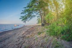 在一个美丽的湖的岸的早晨,风景 免版税图库摄影