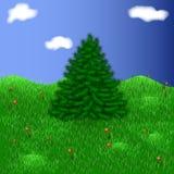 在一个美丽的草甸的杉树在草莓中 免版税库存照片
