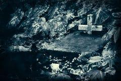 在一个老墓地 免版税库存照片