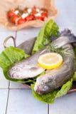 在一个老平底锅的二条新鲜的鳟鱼鱼 库存图片