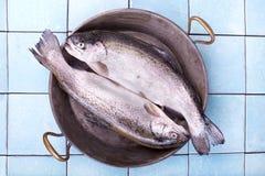 在一个老平底锅的二条新鲜的鳟鱼鱼 库存照片