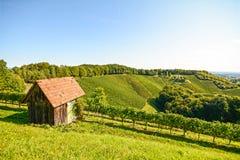 在一个老木小屋的看法在葡萄园里,南施蒂里亚奥地利 库存图片