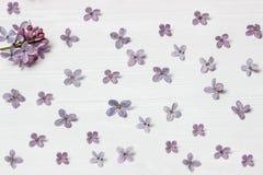 在一个老木板的淡紫色花 免版税库存图片