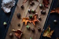 在一个老木盘子、橡子和叶子的秋天构成 土气样式 免版税库存照片