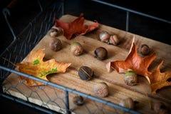 在一个老木盘子、橡子和叶子的秋天构成 土气样式 库存图片