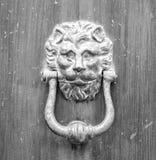 在一个老木门的狮子顶头敲门人在托斯卡纳 免版税图库摄影