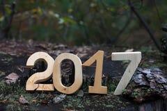 在一个老树桩的图2017年在森林 背景能圣诞节使用的例证主题 图库摄影