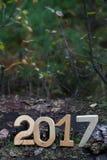 在一个老树桩的图2017年在森林 背景能圣诞节使用的例证主题 Shal 库存图片