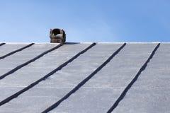 在一个老锡屋顶的烟囱 免版税图库摄影